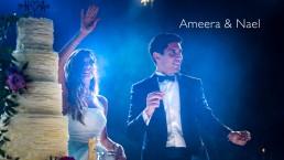 Dubai Desert Palm wedding highlights
